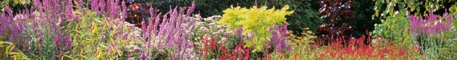 Mat riel de jardinage paliseul bouillon for Entretien materiel jardinage